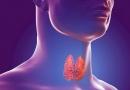 Онлайн лекция, посвященная Всемирному дню щитовидной железы «Заболевания щитовидной железы в современных условиях».